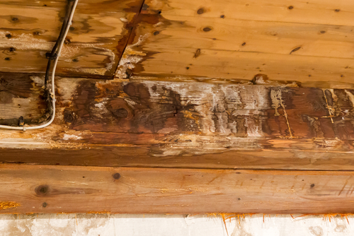 Roof leak damage Canonsburg-PA-15317
