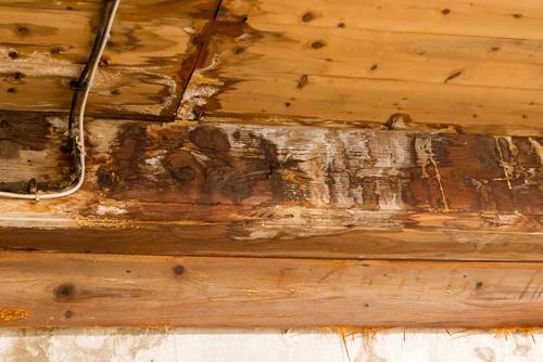 Roof leak damage Canonsburg-PA-15317