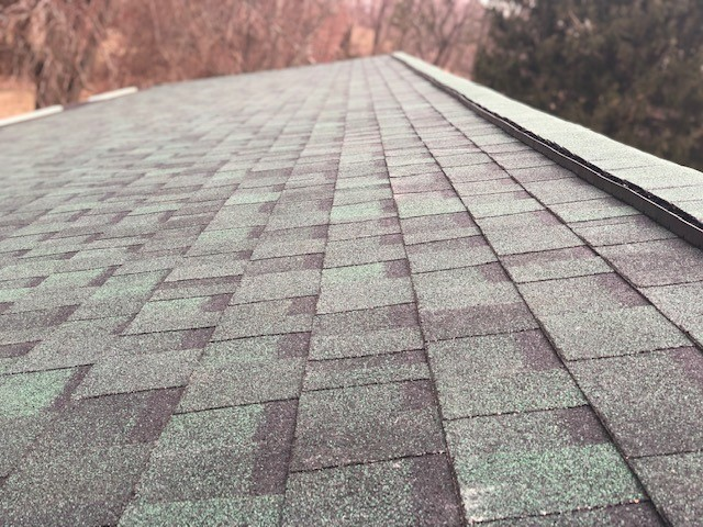 Green Shingle Roofing canonsburg-PA